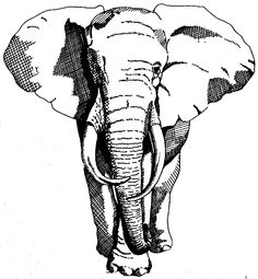 Logo for my newest company-Gray Elephant Club