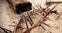 Αντιγραφάκιας: Η σταύρωση είναι ο μόνος δρόμος της ανάστασης. 'Αλ...
