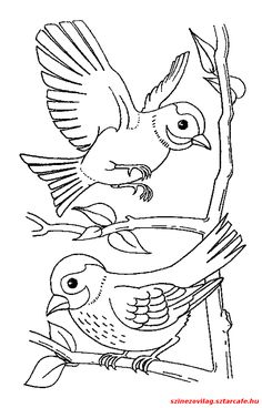 """Képtalálat a következőre: """"téli madaras színezők"""""""