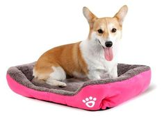Warming Dog House Soft Pet Nest Dog Warm Nest Kennel For Cat Puppy Plus size beds for large pets Large Dogs, Small Dogs, Happy Animals, Cute Animals, Le Plus Grand Chien, Cat Kennel, Pet Dogs, Pets, Large Animals