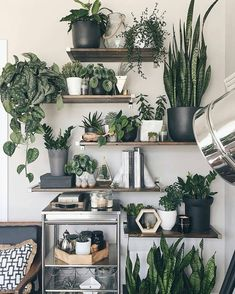 8 Simple and Stylish Tips: Plants Decor Cups artificial plants indoor herbs garden.Artificial Flowers Look Real artificial plants living room floral arrangements. Decoration Plante, Balcony Decoration, Home Decoration, Decorations, House Plants Decor, Plant Wall Decor, Boho Living Room, Living Rooms, Living Room With Plants