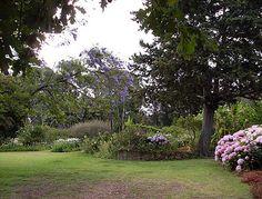 Moolmanshof | in South Africa, Western Cape, Route 62, Cape Overberg, Swellendam, Swellendam area Cape Dutch, Old World Charm, South Africa, Sidewalk, Plants, Walkway, Flora, Plant, Walkways