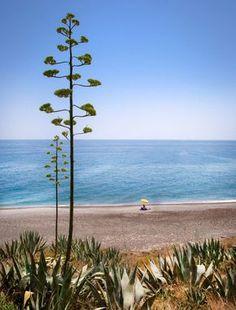 Playa naturista El Ruso (Albuñol, #Granada) Love Island, Island Girl, Granada, Costa, Tropical, Andalucia, Beach Bum, Beautiful Islands, Where To Go