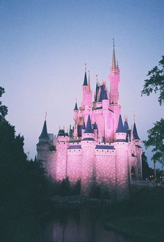Disney World Cinderella Castle I went and seen this castle this year during school 2013 but it didn't turn this color