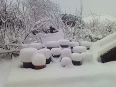 Snowy soy jar stands