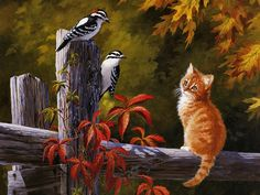 Woodpeckers and Kitty