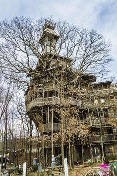 The biggest treehouse in the world.