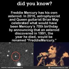 """Did you know? Freddie Mercury has his own asteroid. In astrophysicist and Queen guitarist Brian May celebrated what would have been Mercury's birthday by announcing that an asteroid discovered in the year he died, would be renamed """"Freddie Queen Freddie Mercury, Freddie Mercury Quotes, Queen Band, Brian May, I Am A Queen, Save The Queen, Across The Universe, John Deacon, Queen Songs"""