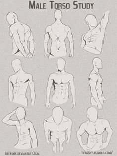 "drawingden: ""Male Torso/Chest Study by TIFFASHY """