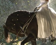 Love This Pic...Such A Beautiful Horse, and lovely lady in gown