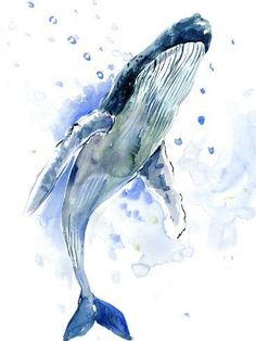 Humpback Whale, original watercolor painting, sea world, sea animals, beach - My list of the most beautiful animals Whale Painting, Watercolor Whale, Watercolor Artwork, Watercolor Animals, Whale Illustration, Whale Tattoos, Whale Art, Ocean Creatures, Humpback Whale
