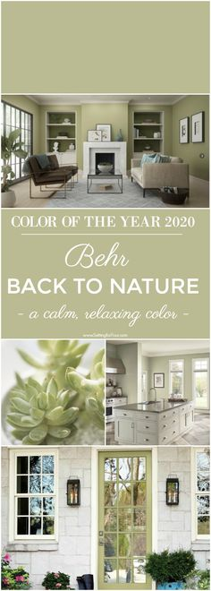 Behr Back To Nature Paint Color - Color Of The Year 2020 - - Color Inspiration! Behr Back To Nature Paint Color is Color Of The Year See this beautiful green paint color on a front door, bedroom, kitchen! Natural Paint Colors, Rustic Paint Colors, Kitchen Paint Colors, Neutral Paint, Kitchen Wall Paints, Green Kitchen Paint, Best Kitchen Colors, Gray Paint, Neutral Colour Palette