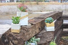 Cool DIY Cement Planters For Succulents Straight forward instructions! Cool DIY Cement Planters For Succulents Cinder Block Garden, Cinder Blocks, Diy Cement Planters, Spring Wedding Decorations, Diy Plant Stand, Concrete Blocks, Diy Concrete, Concrete Projects, Cool Diy