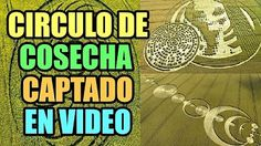 Circulo De Las Cosechas (Crop Circles) Captado En Vídeo.