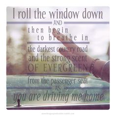 lyrics from the song passenger seat by death cab for cutie