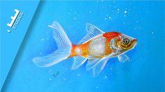Desenho Realista de Peixe Colorido | Realistic Drawing Fish