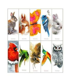 Bookmarks - Set of 10 Birds - Cardinal Quetzal Bluebird Hummingbird Red Squirrel, Butterfly Watercolor, Blue Bird, Hummingbird, Watercolors, Bookmarks, Insects, Rabbit, Bee