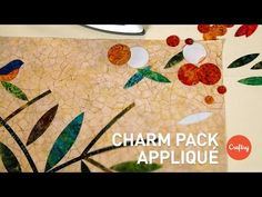 "http://missouriquiltco.com -- Jenny Doan teams up with the Queen of Appliqué, Jan Patek, in this four part series ""How to Appliqué Like a Pro"". Jan has been ..."