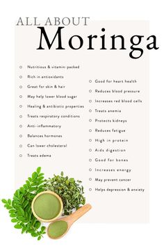 Curious about what the drumstick tree can do you for you? We'll break down the facts, the benefits, and the best ways to make moringa work for you! Nutrition Holistique, Holistic Nutrition, Health And Wellness, Health Tips, Holistic Wellness, Nutrition Products, Wellness Clinic, Healthy Holistic Living, Complete Nutrition