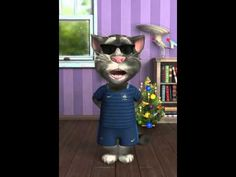 gato tom cantando limbo