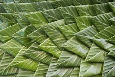 Background of banana leaf that hand make in Thai culture for decoration Stock Photo