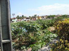 Fortaleza em Fotos e Fatos: Espaço Urbano de Fortaleza e distribuição espacial das Classes Sociais
