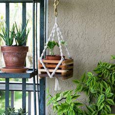 Macrame Plant Hanger-6 Wooden Basket Orchid Plant by TysKnots