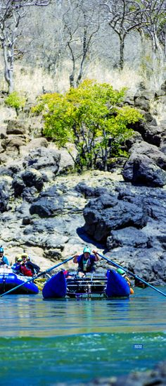 Water By Nature Rafting takes Cataract Oars oar shafts and blades on whitewater river expeditions around the world to the Zambezi, Futaleufu and more. #cataract #rafting #oars #oarsome #slc #quality #handcrafted #oarshaft #oarblade #filamentwound #whitewatergear #madeinutah #carbonfiberoars #madeintheusa #rowing #toughoars #extremeoars #whitewater #whitewateroars #raftingoars #riverrafting #zambezi #futaleufu #cotahuasi www.waterbynature.com www.cataractoars.com www.advancedcomposites.com