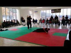 Kung fu Testa rotta fail