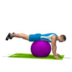 The exercise involves the glutes and partially the biceps femoris and the lumbar area of the back.
