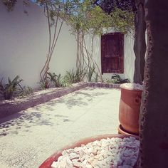 Welcome to chill in our garden after a wonderful surf day. Surf Morocco, Wave Dance, Surfing Destinations, Boutique Retreats, Dance Camp, Organic Herbal Tea, Surf House, Learn To Surf, Yoga Retreat