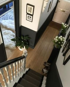 Evening pals, here is another angle on the hallway and an insta debut for my other cat George. She's quite shy and normally doesn't stay… Hallway Decorating, Painted Staircases, Hallway Paint, Victorian Homes, Edwardian Hallway, Staircase Design, Half Painted Walls, House Interior, Carpet Stairs