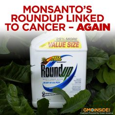 The change in how agriculture is produced has brought, frankly, a change in the profile of diseases. We've gone from a pretty healthy population to one with a high rate of cancer, birth defects and illnesses seldom seen before. More here: http://truth-out.org/news/item/26614-monsanto-s-roundup-linked-to-cancer #StopMonsanto #LabelGMOs #BanGMOs