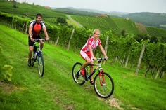 Hügelauf, riegelab auf ruhigen Straßen, sattblühende Wiesen im Frühling, durch farbenprächtige Weingärten - so macht Radfahren Spaß.  #Badradkersburg #Radregion #Weinberge #Natur
