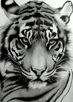 Sumatran Tiger by ~artistelllie on deviantART