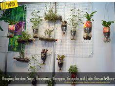 kinda cool indoor garden idea