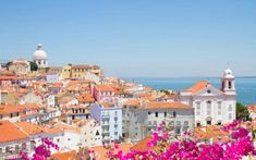 19 reasons why Lisbon should be your next city break | via The Telegraph | 6/12/2016 Lisbon rose nine places to 26th in the World's Best Cities category at this year's Telegraph Travel Awards, voted for by more than 70,000 readers. Here's why it's proving so popular... Photo: Lisbon's pastel-shade views #Portugal