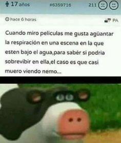 But eres un pez alv glu glu glu :V Funny Spanish Memes, Spanish Humor, Funny Memes, Jokes, Pinterest Memes, Clean Memes, New Memes, Stupid Funny, Haha