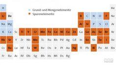 Spurenelemente von Arsen bis Zink: wichtig Helfer für den menschlichen Körper | WAY