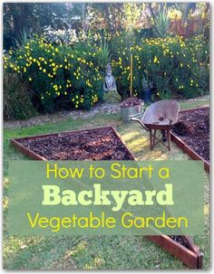 A backyard vegetable garden plan for an 8 x 12 space from