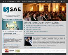 Diseño de sitio web para SAE Consultora.