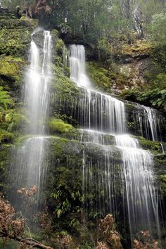 Marriot Falls Tasmania-what I would imagine Heaven looks like Beautiful Waterfalls, Beautiful Landscapes, Vitrier Paris, Beautiful World, Beautiful Places, Places To Travel, Places To Visit, Nature, Scenery