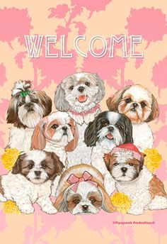 Shih Tzu Flag - Welcome (Garden) - - Shih Tzu Garden Flag by Artist Mary Badenhop Approximate Size: 12 x 18 inches Constructed from 2 pieces of Cute Dogs And Puppies, I Love Dogs, Doggies, Animal Drawings, Cute Drawings, Animal Pictures, Cute Pictures, Dog Store, Shih Tzu Dog