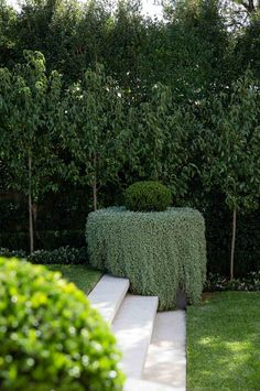 Beautiful slope garden landscaping design.