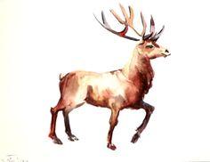 Deer, original watercolor painting, 9 X 12 in