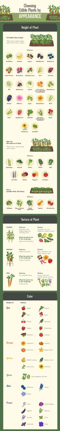 Choose your crops (color & contrast) for edible landscaping