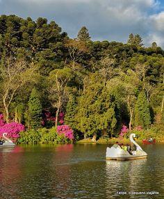 Em todas as nossas últimas viagens à Serra Gaúcha , estivemos no Lago Negro de Gramado .     É um lugar lindo, ótimo para ir com criança...