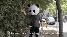 Shawn becoming a panda at the end of the Buzzfeed video