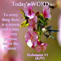 Today's Word