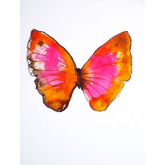 pink and orange butterfly. original watercolour on paper. ($33) via Polyvore